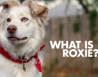 What is Roxie?