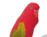 Parrot Bird with PSD