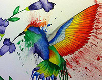 Splatter Humming Bird