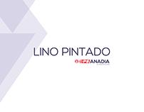 Campanha Eleitoral Lino Pintado