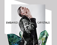 EMBAYED CRYSTALS
