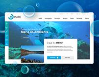 MARE website design