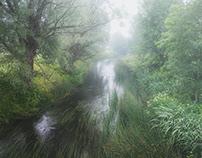 Mist in the village