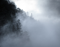 The sound of the mist