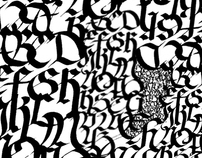 Catálogo de Blancos y Negros caligráficos