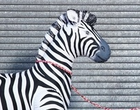 My Pet Zebra