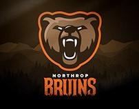 Northrop Bruins - Rebrand Concept