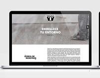 SITIO WEB | TORGINOL