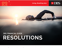 DBS Financial Guide: Resolutions (2017)