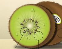 KIWI Fruit Ad