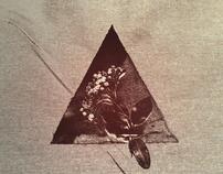 Album cover / Capa de Album