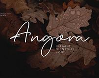 Angora | Signature Font