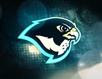 North Ridge Falcons | Sports Logo + Branding