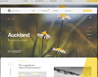 Auckland web concept