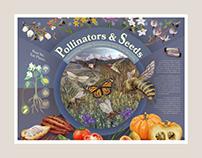 Pollinators & Seeds Poster