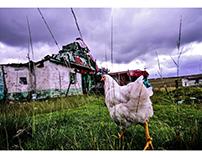 Rural Transkei