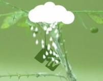MTV Green
