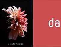 Naturliebe meets Bauhaus-Schriften