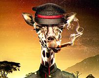 San Diego Zoo ADS