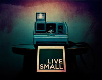 Live Small: Series Graphics