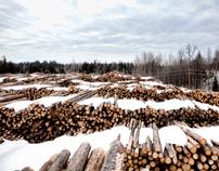 logging.