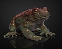 Toad // texturing practice
