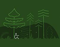 Lesy ČR - Forest certification