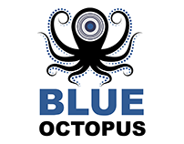 Blue Octopus Company Brochure