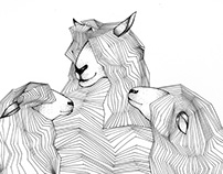 |my| Illustrations