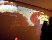After Taste / Exhibition