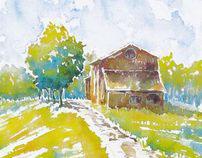 Watercolor painting / Acquerelli / Акварель 2010