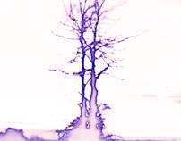 albero1.0