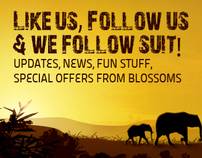 Web Banner for blossoms_Like Us_Follow Us