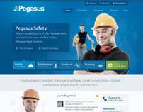 Pegasus Website Re-Design