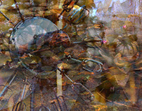abstract -digital photography-