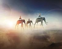 Elephants in the desert