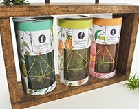 Flourish - Product and Packaging Project