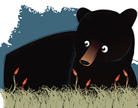 Ursus Americanus Luteolus -- Louisiana Black Bear