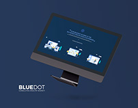 Illustrations Slides for BlueDot Consultant Agency