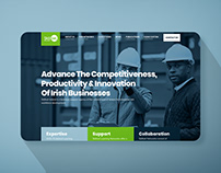 Skillnet Ireland Website Proposal
