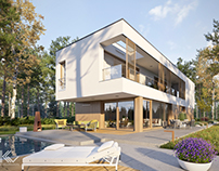 Modern single-family house 4