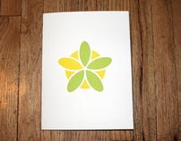 Lemon-Lime Design Identity