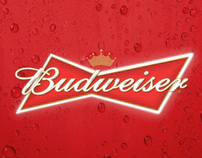 Budweiser Elevate TV:30