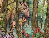 MOOSE   Canadian Wildlife Magazine