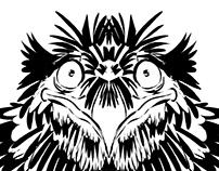 Sketches of bird