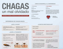 Poster infográfico