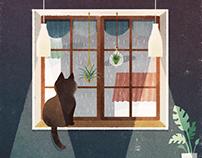 It's raining and cat. (GIF)
