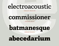TypeClinic 7th international type design workshop, 2013