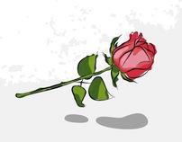 Lady & Rose