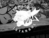 PUMA IGNITE ISTANBUL Web Design